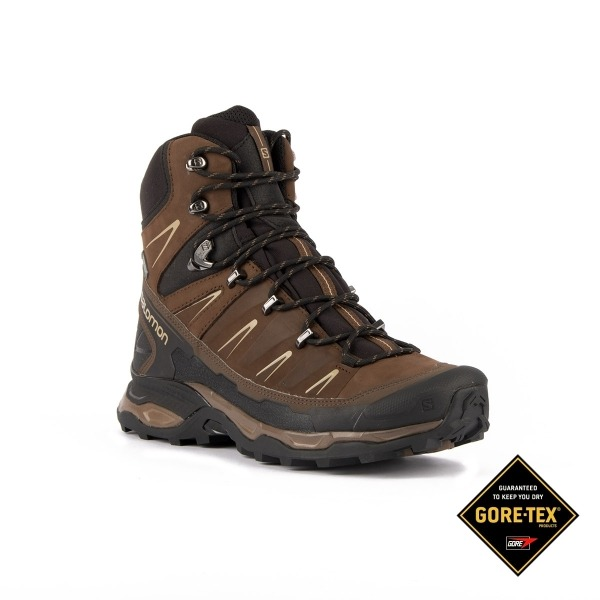sale retailer 3724b a6a34 Salomon Botas X Ultra Trek GTX Absolute Brown Marrón Hombre