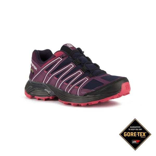 Salomon Zapatilla XT Asama GTX W Evening Blue Dark Purple