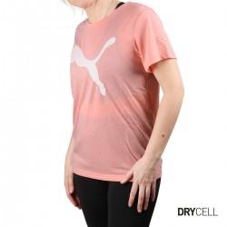 Puma Camiseta Evostripe Tee Apricot Mujer